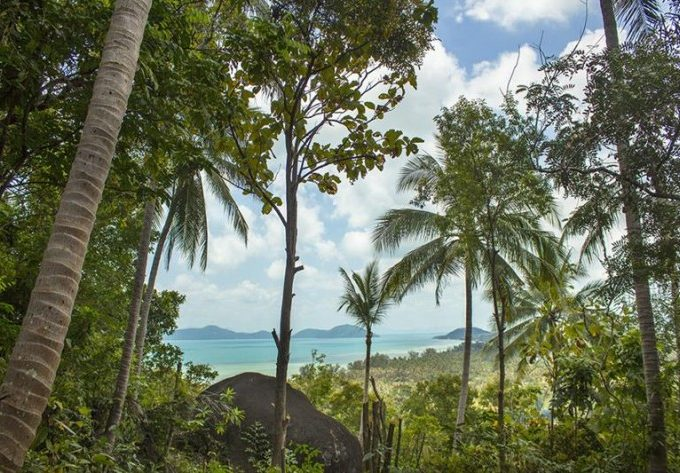 S1277: 1.5 RAI SEA VIEW KOH SAMUI LAND PLOT FOR SALE