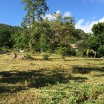 S1489: KOH SAMUI FLAT LAND PLOT FOR SALE WITH CHOENG MON VIEW